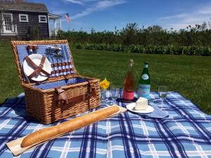 daffy picnic